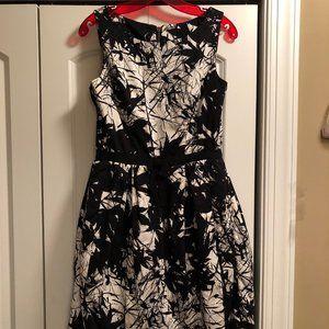Taylor Splatter Fit and Flare Dress